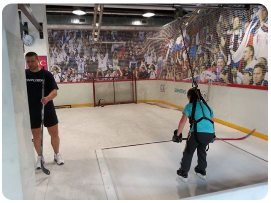 benicky hockey center